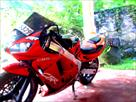 Sri Lanka Classifieds Honada CBR 250